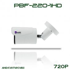 دوربین دید درشب دیواری PBF-220-1HD